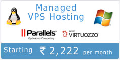 Linux Windows VPS Hosting India
